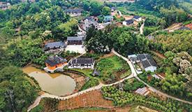 生态产业助力乡村振兴