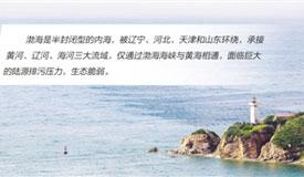 综合治理 净化渤海