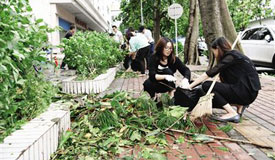广东珠海:台风离境 灾后复产